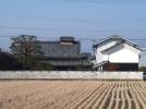 田舎で農業